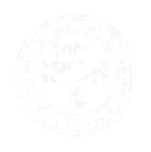 Irish Badge 01