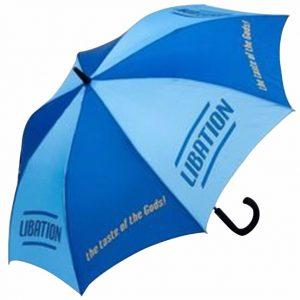 Walking Umbrella4